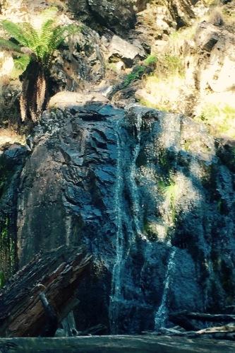 Holwell Gorge Falls Tasmania Australia